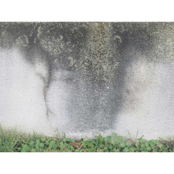 jardins-clos-09-dominique-clevenot