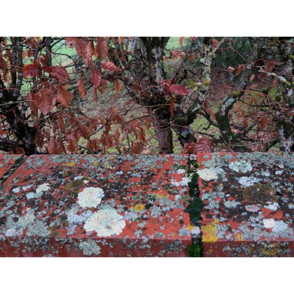 jardins-clos-26-dominique-clevenot