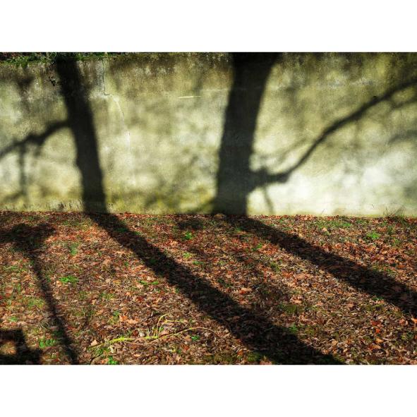 jardins-clos-27-dominique-clevenot
